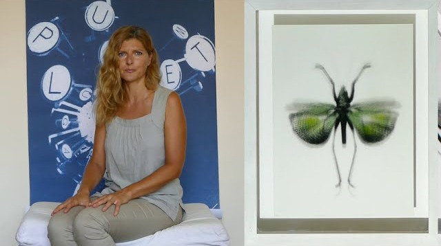 Stefania Ricci, artista, presentazione per il club per l'unesco di Ivrea
